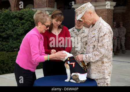 Commandant of the Marine Corps, Gen. James F. Amos; the First Lady of the Marine Corps, Bonnie Amos share a moment - Stock Photo