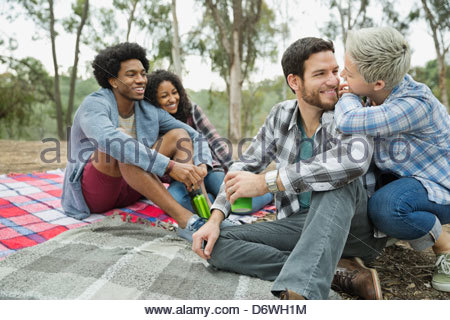 Happy couples spending leisure time together on blanket - Stock Photo