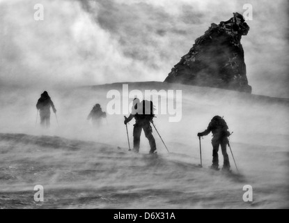 A windy morning ski touring on the Gran Paradiso - Stock Photo
