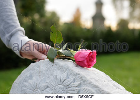 Woman with a rose on a grave stone, Bonn, Germany - Stock Photo
