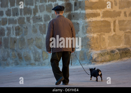 Old man walking his chihuahua dog in the streets of Laguardia, Northern Spain - Stock Photo