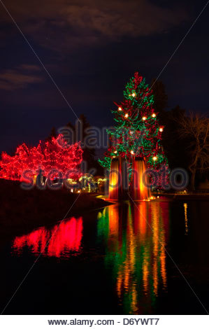 Blossoms Of Light One Million Lights Illuminating The Denver Stock Photo 94859481 Alamy