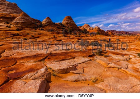 Hiking in the sandstone rock formations of Coyote Buttes North, Paria Canyon-Vermillion Cliffs Wilderness Area, - Stock Photo