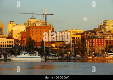 Full moon rising over Victoria skyline and Inner Harbor with construction crane on building-Victoria, British Columbia, - Stock Photo