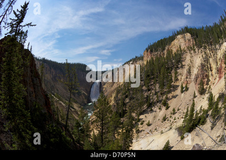 USA, Wyoming, Yellowstone National Park, View of Lower Falls from Red Rock Point, Grand Canyon of the Yellowstone - Stock Photo