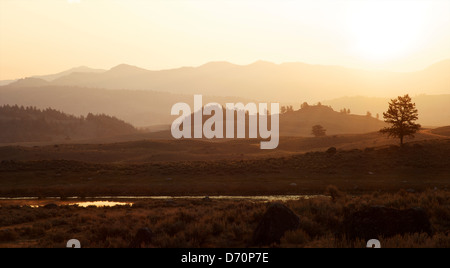 USA, Wyoming, Yellowstone National Park, Sunrise over the Lamar Valley - Stock Photo