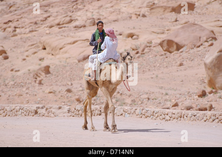 Two young bedouin riding on a camel, Arabian camel (Camelus dromedarius), Sinai Peninsula, Egypt  - Stock Photo
