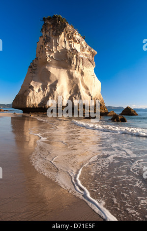 Early morning light and the striking natural limestone rock stack known as Te Hoho Rock, Cathedral Cove,  Coromandel - Stock Photo