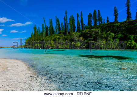 Natural swimming pool, Oro Bay, near the Le Meridien Isle of Pines (Ile des Pins), New Caledonia - Stock Photo
