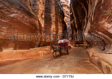 Horse drawn carriage riding through the Siq (a 1200 meter long gorge) in the Petra archaeological site (a UNESCO - Stock Photo