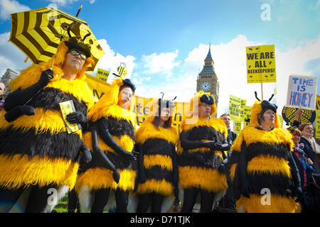 Parliament, London, UK. 26th April 2013. Around 100 beekeepers are expected to gather on Parliament Square and after - Stock Photo
