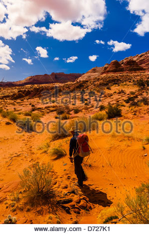 Hiking in Coyote Buttes North, Paria Canyon-Vermillion Cliffs Wilderness Area, Utah-Arizona border, USA - Stock Photo
