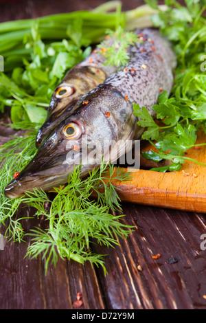 Raw fish pike on the board and greens, food closeup - Stock Photo