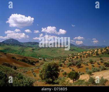 Andalucian landscape near Granada, Spain - Stock Photo