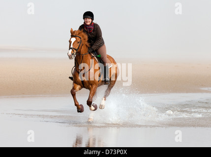 A girl riding her horse galloping on Holkham Beach, Norfolk coast, East Anglia UK - Stock Photo