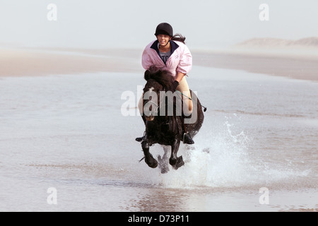 A young woman riding her horse on a sandy beach, Holkham beach Norfolk East Anglia, England UK - Stock Photo
