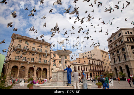 pigeons over the marble fountain Fuente de los Leones on Plaza de San Francisco in Havana, Cuba, Caribbean - Stock Photo