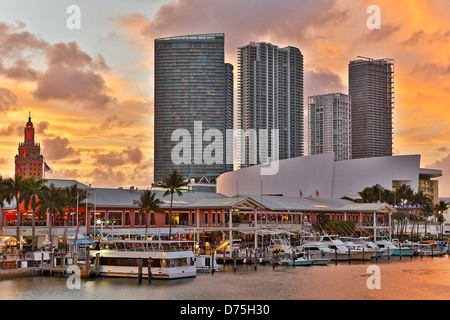 Marina at Bayfront Marketplace and skyscrapers, Miami, Florida USA - Stock Photo