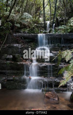Leura Cascades waterfall, Jamison Valley, Blue Mountains, NSW, Australia - Stock Photo