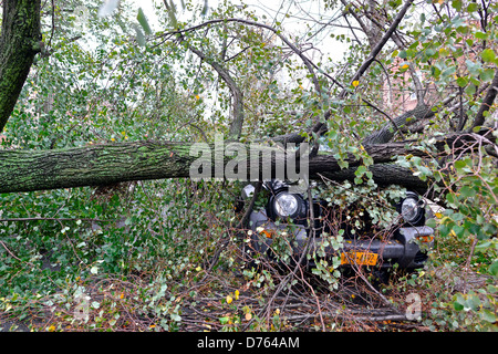 USA, New York City, Queens, Aftermath of tropical hurricane Sandy, October 30, 2012 - Stock Photo