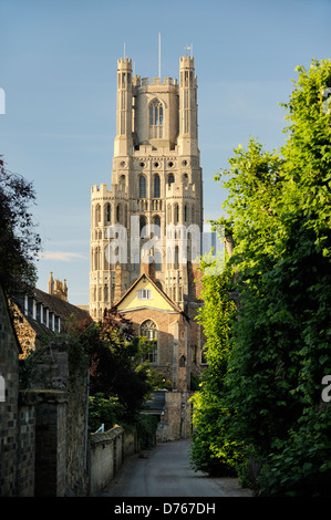 Ely Cathedral, Cambridgeshire, England. The West Tower seen from the south - Stock Photo