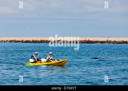 Tourists during Dolphin watching tour, Walvis Bay, Namibia - Stock Photo