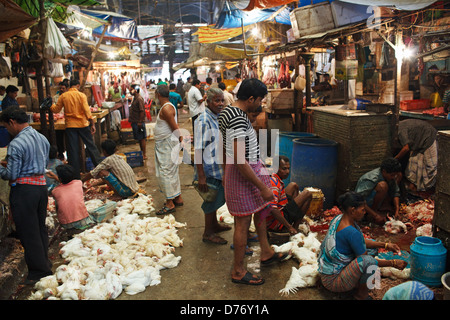 The meat section at New Market in Kolkata (Calcutta), India - Stock Photo