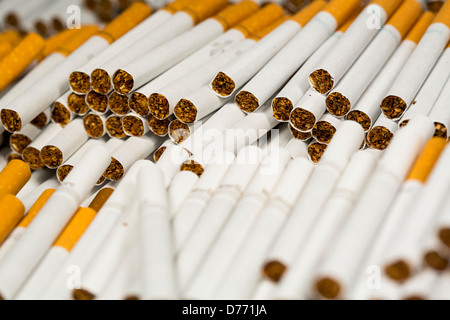 Various loose cigarettes. Marlboro, Pall Mall, Winston, Camel, Parliament, Newport, American Spirit.  - Stock Photo