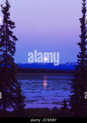 Nearly full moon rising over small lake west Glennallen Alaska. - Stock Photo