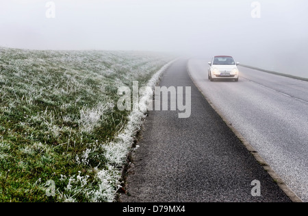 Misty Deichstrasse in Kirchwerder, 4 and marshy land, Hamburg, Germany, Europe (car registration changed) , Neblige - Stock Photo