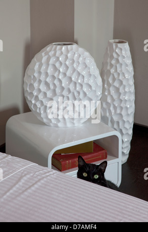 black cat , hiding behind the bed - Stock Photo
