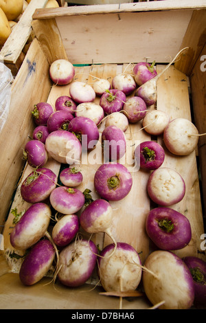 Turnips in the wooden box for sale at the local Toulouse market, France - Stock Photo
