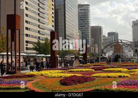 flower carpet on Sejongno street / Jongno-gu in downtown Seoul, South Korea, Asia - Stock Photo
