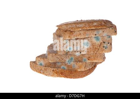 Moldy bread on white background. - Stock Photo