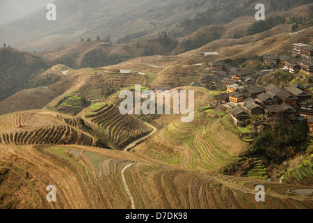 The world-famous rice terraces of Longji 'backbone of the dragon' or 'vertebra of the dragon' and the village of - Stock Photo