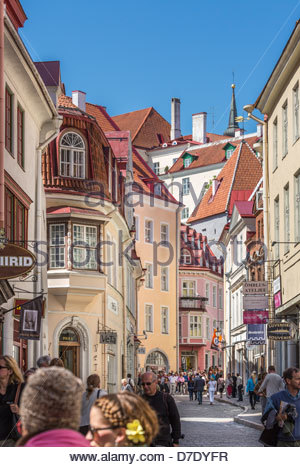 buildings of medieval high street (Pikk Street ) in Tallinn medieval old town. people, tourists - Stock Photo