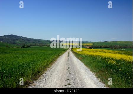 italy, tuscany, val d'orcia, country road - Stock Photo