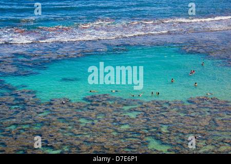 beachgoers and tourists snorkel off the reefs in Hanauma Bay on the island of Oahu, Hawaii - Stock Photo