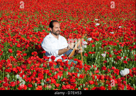 Painting Holiday outdoors man in Fields of wild Poppies with Spain - Stock Photo