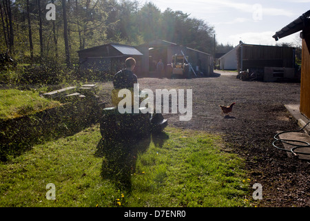 A teenage boy of 15 years of age throws up grass cuttings up in the air while mowing a patch of grass on a farmstead, - Stock Photo