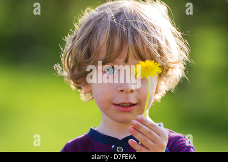 Closeup portrait of a cute curled child in the sun holding a single dandelion flower in the hand on bright green - Stock Photo