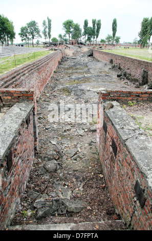 Ruins of the gas chamber building known as Crematorium IV, or Krema IV, at Birkenau (Auschwitz) concentration camp, - Stock Photo