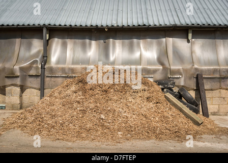 horse manure pile in english farmyard stable - Stock Photo