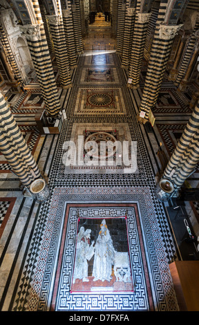 Italy Siena inlays of colored marbles of the Duomo's floor - Stock Photo