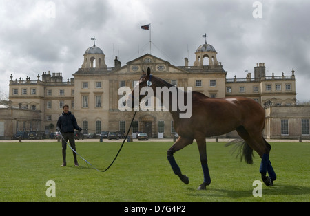 Badminton Horse Trials Gloucestershire UK. Badminton House, competitor exercises his horse in front of the house. - Stock Photo