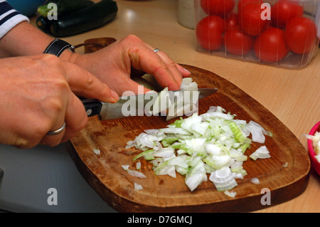 working in kitchen, preparing food, cutting onions - Stock Photo