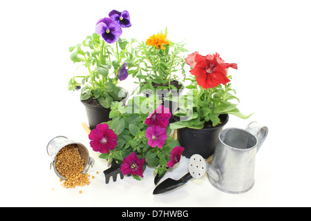 slow-release Fertilizer with flowers and garden tools on a light background - Stock Photo