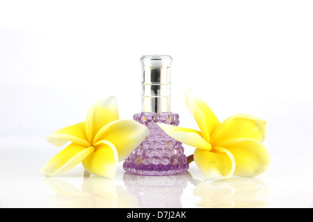Yellow flowers and violet Perfume bottles on the white background. - Stock Photo