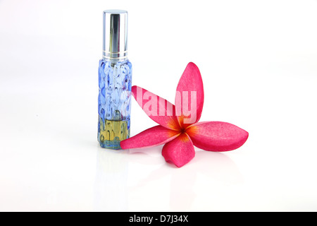 Red flowers and Blue Perfume bottles on the white background. - Stock Photo