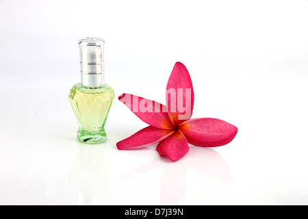 Red flowers and Green Perfume bottles on the white background. - Stock Photo
